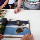 Решение по спорным видам Красной книги примут после научных исследований