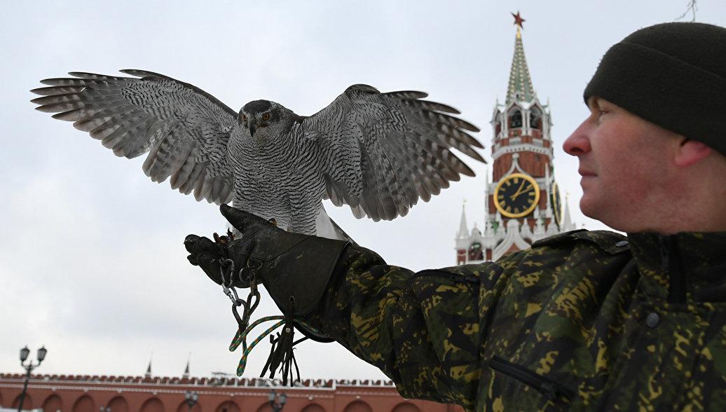 Источник поведал оспособности кремлевских ястребов сбивать беспилотники