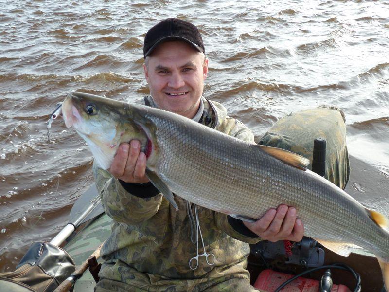 Северный муксун - всегда свежая рыба из Сибири