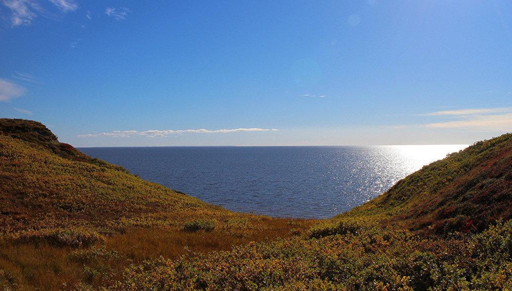 Берег Карского моря ежегодно отступает до четырех метров