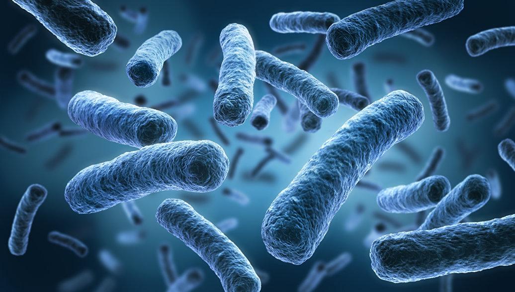 Химики создали антибиотик, способный убивать