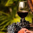 Распробовать Крым на вкус: лучшие вина и новые маршруты полуострова