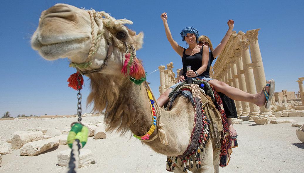 От тысячи долларов: кому на самом деле нужны рейсы в Каир