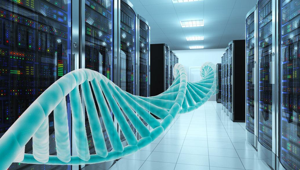ДНК как флешка: записываем цифровые данные прямо в геном