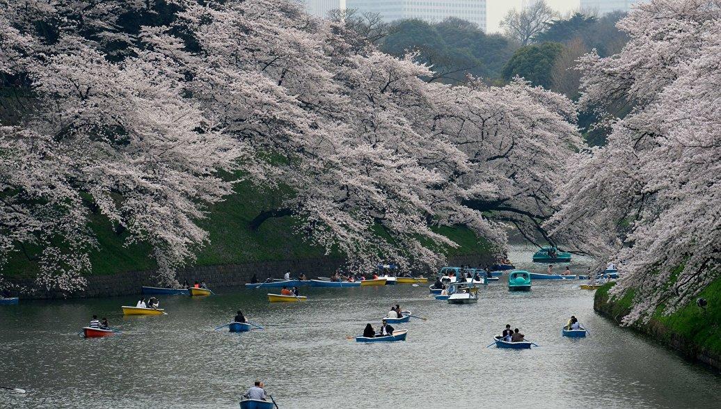 Япония меняет правила выдачи виз российским туристам