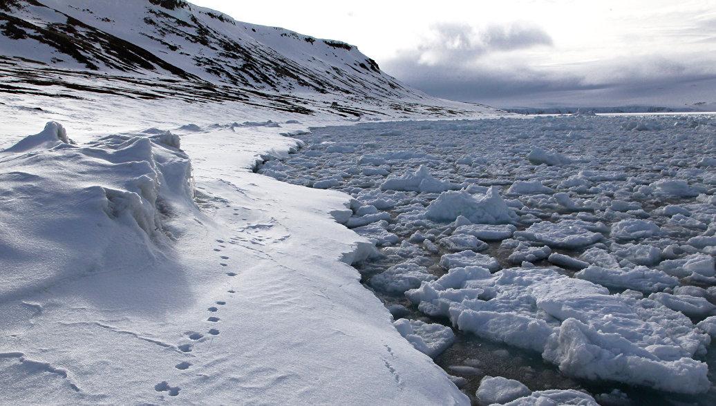 Правительство рассмотрит проект постройки платформы для изучения Арктики