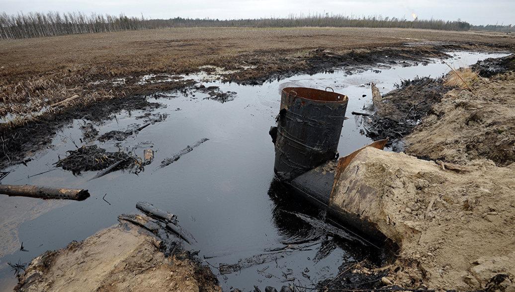 ОП планирует обучить пять тысяч общественных экологических инспекторов