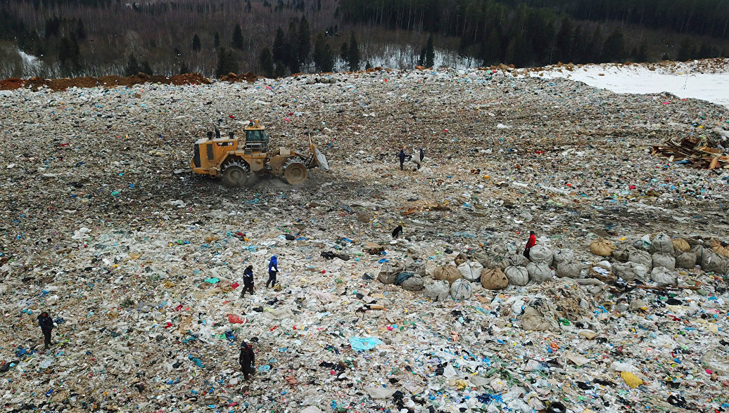 ОНФ создал независимую группу экологического контроля