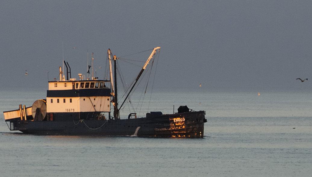 ФСБ намерена пресечь деятельность украинских браконьеров в Азовском море