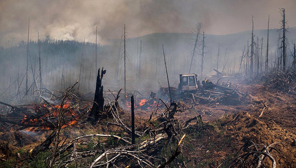 Площадь лесных пожаров в Приамурье превысила 40 тысяч гектаров