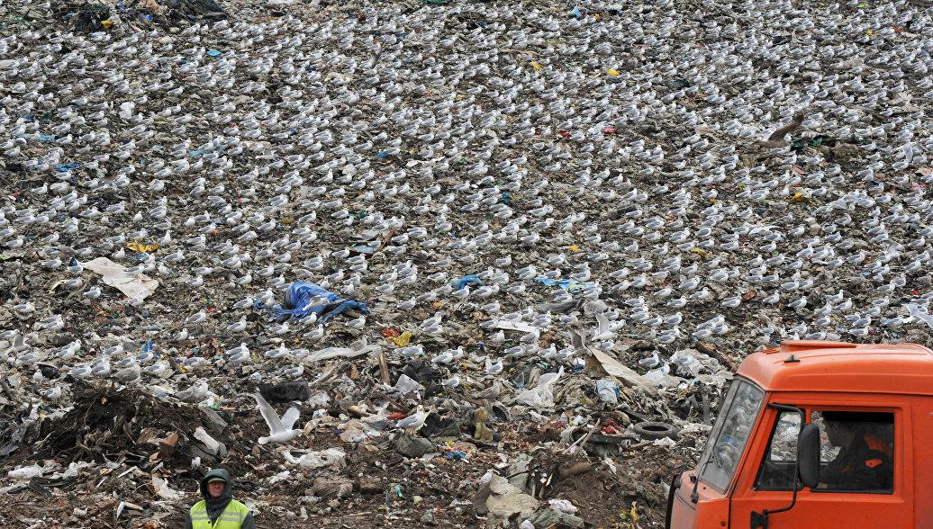 Суд решил закрыть мусорный полигон