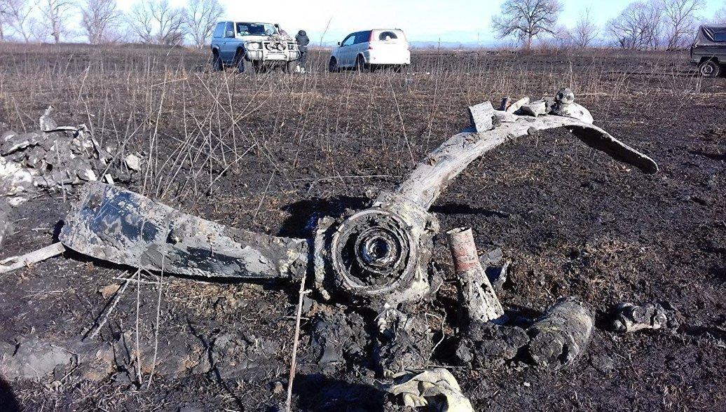 Поисковики выяснили историю крушения бомбардировщика в Приморье в 1942 году