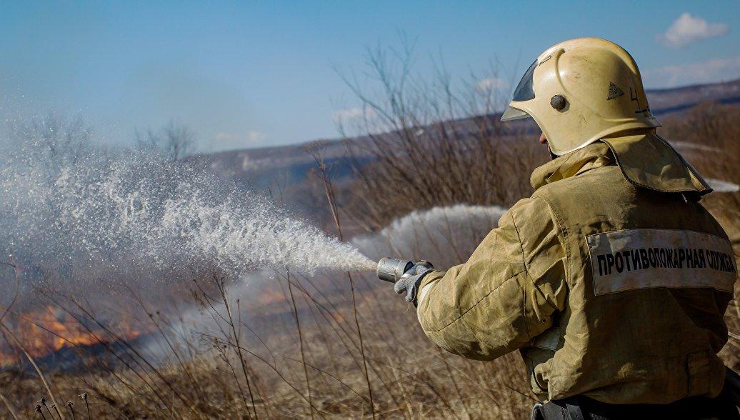 Количество лесных пожаров в ДФО за сутки сократилось на треть