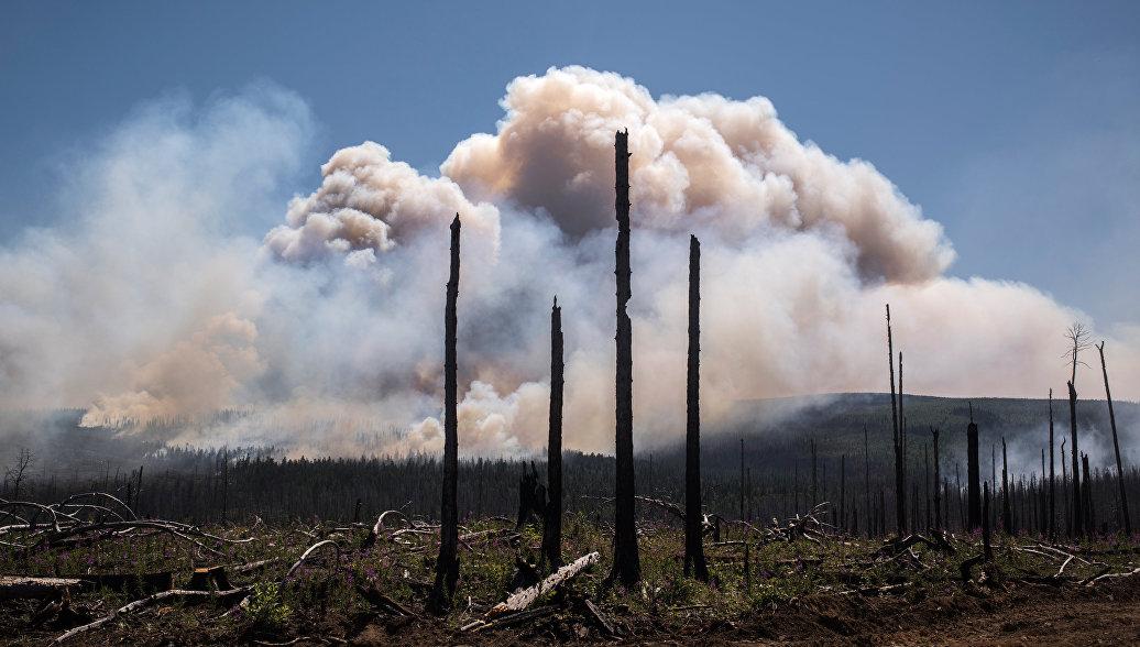 В ЦВО более пяти тысяч военных готовы к борьбе с лесными пожарами
