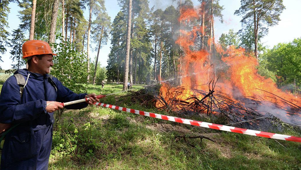 В Югре ликвидировали пять лесных пожаров общей площадью 572 гектара