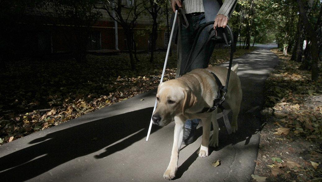 Камчатский инвалид проверит, как кафе, в которое его не пустили,