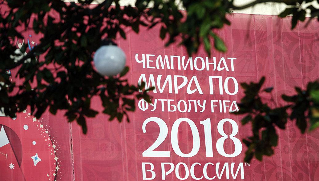 В Петербурге к ЧМ-2018 установили фигуры 32 котов-футболистов