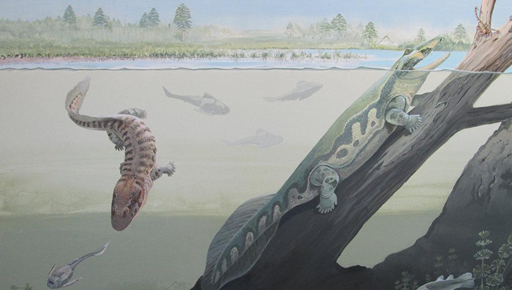 Ученые нашли в ЮАР останки древнейших четвероногих животных Земли