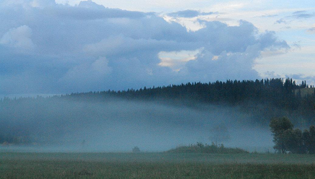 Новая особо охраняемая природная территория создана в Кемеровской области