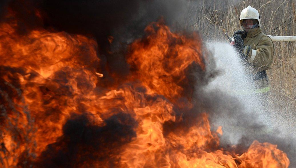 В России потушили более 60 лесных пожаров за сутки