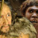 Человек выживший: как наши предки победили неандертальцев