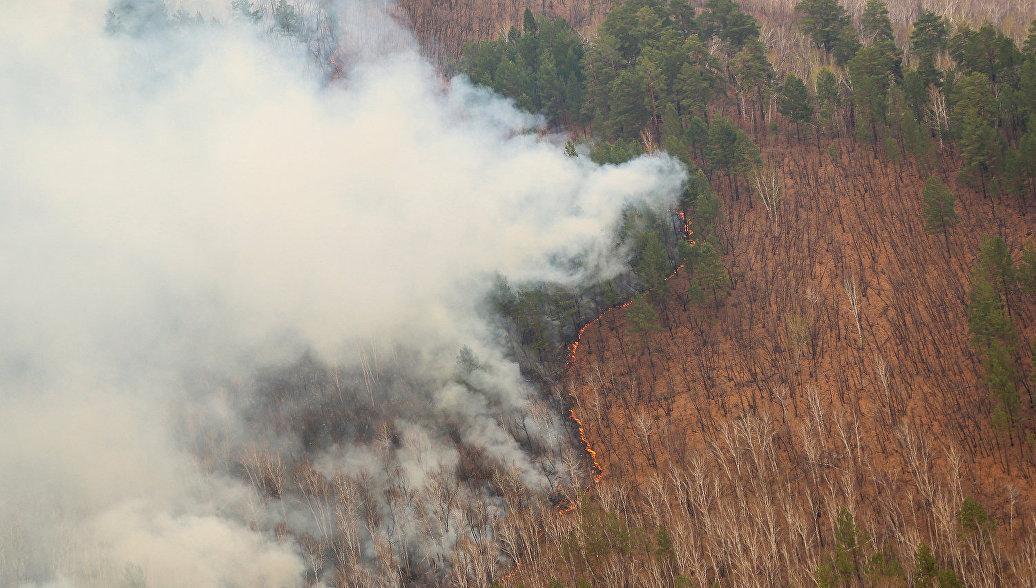 На Дальнем Востоке за сутки сгорело более 112 тысяч гектаров леса