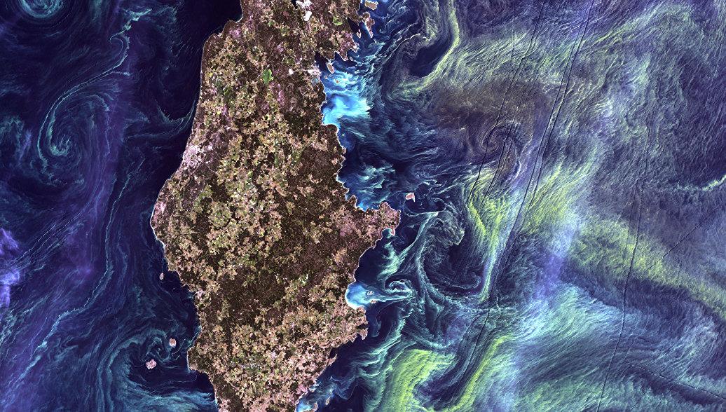 Ученые назвали главную экологическую проблему Балтийского моря