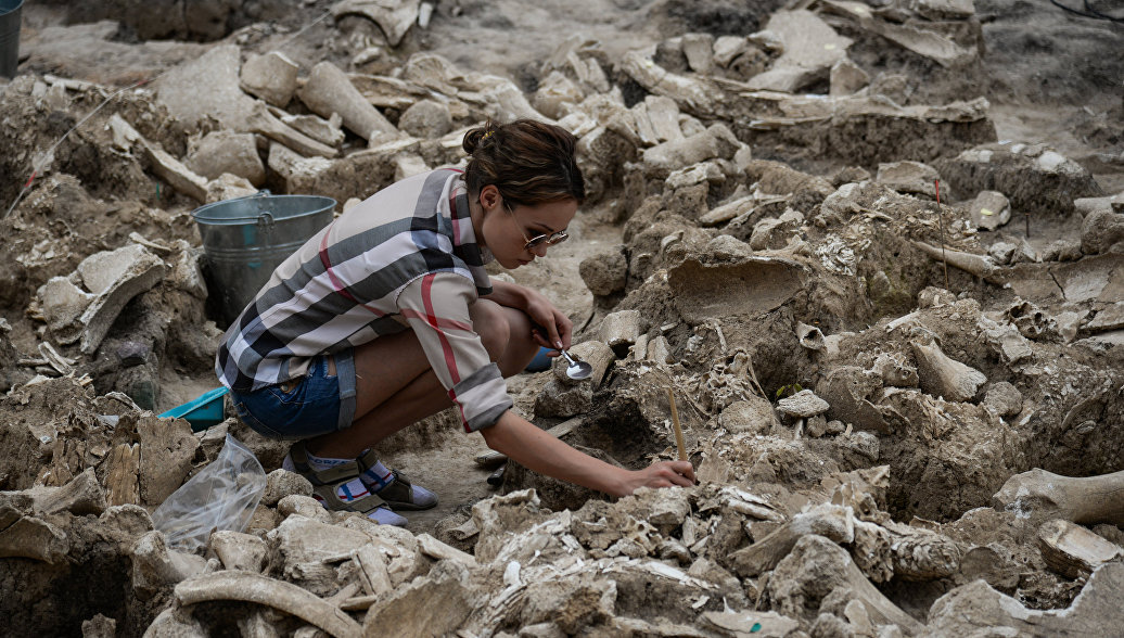 Спелеологи Крыма нашли останки древних хищников в недавно открытой пещере