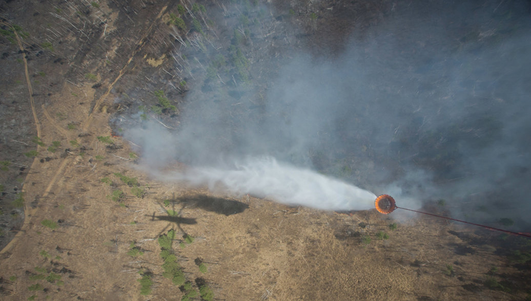 На Дальнем Востоке за сутки сгорели свыше 106 тысяч гектаров