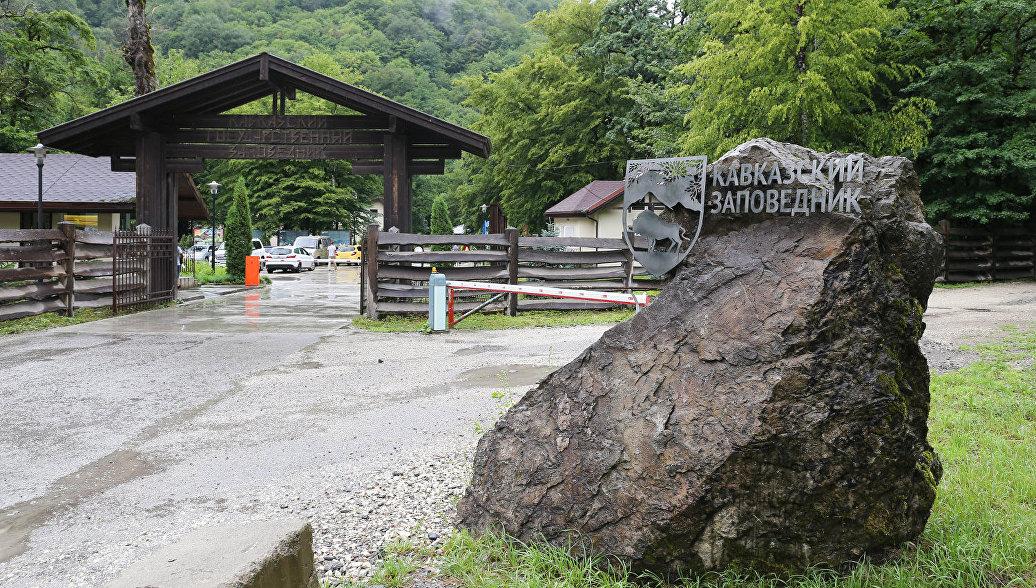 На страже гор: волонтеры закончили первую смену в Кавказском заповеднике