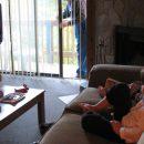 В Совфеде предложили разрешить рекламу во время детских передач