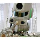 Россия может отправить в космос экипаж из двух роботов