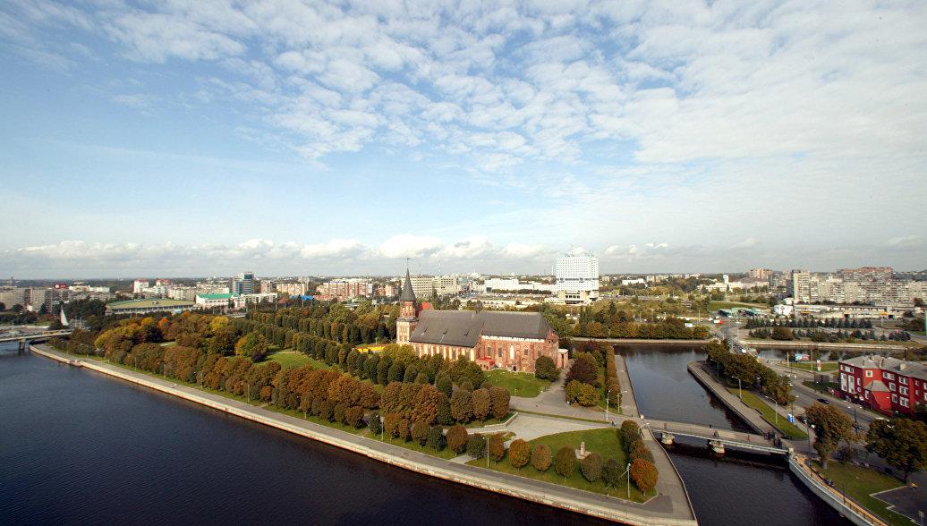 В Калининграде установили памятник сому