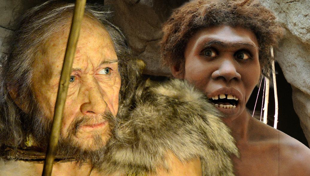 Ученые опровергли миф об эволюции человека