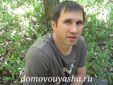 Народные знания от Кравченко Анатолия