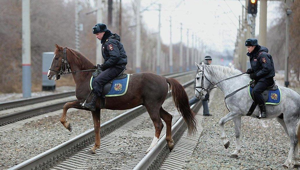 В Саратове наказали полицейских после истории с истощением лошадей