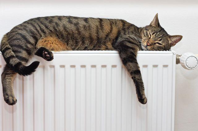Позаботьтесь о тепле в вашем доме с компанией