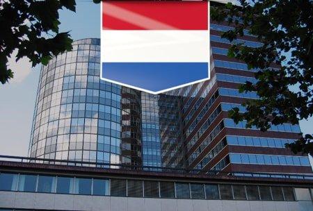 Профессиональная консалтинговая компания в Нидерландах