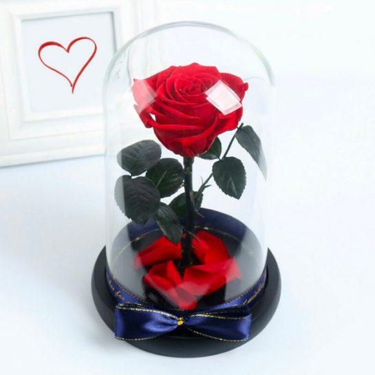 Розы в колбе от ДелюксРоузес
