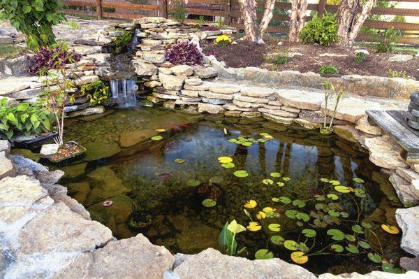 Ландшафтное проектирование, строительство бассейнов и прудов под ключ