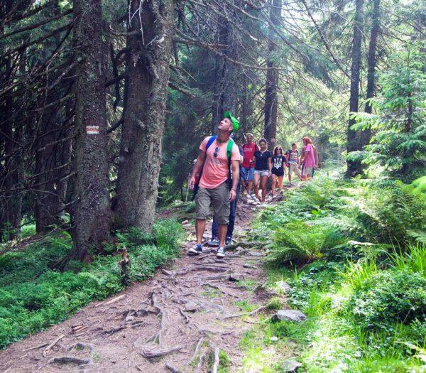 Качественная организация походных туров, трекинга, автотуров