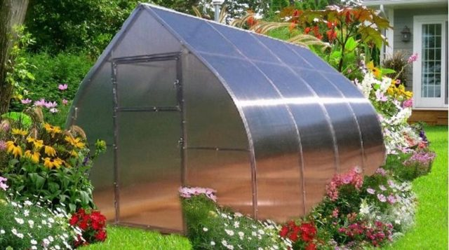 Качественная теплица каплевидной формы из поликарбоната размером 4 на 4 метра